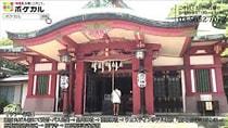 東京に3つしかない鳥居に龍が彫られている寺社を巡ります