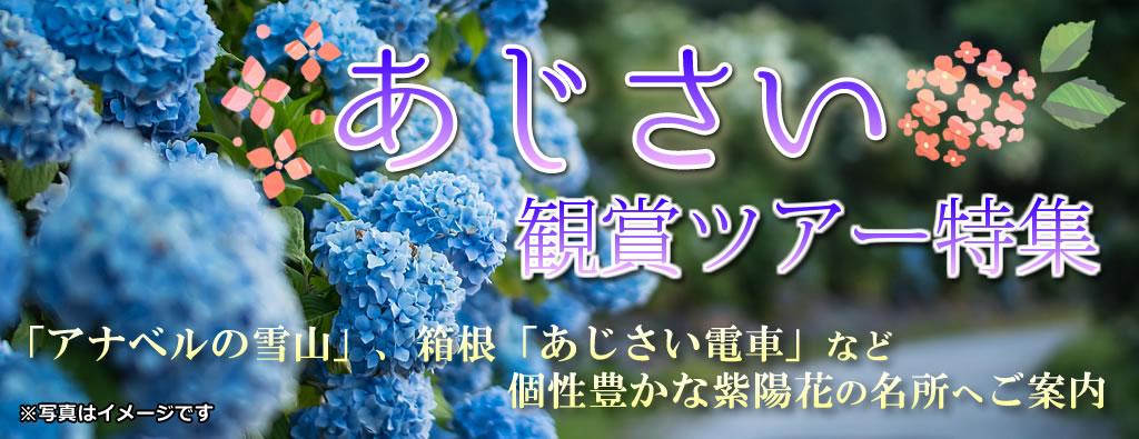 あじさい観賞ツアー2019