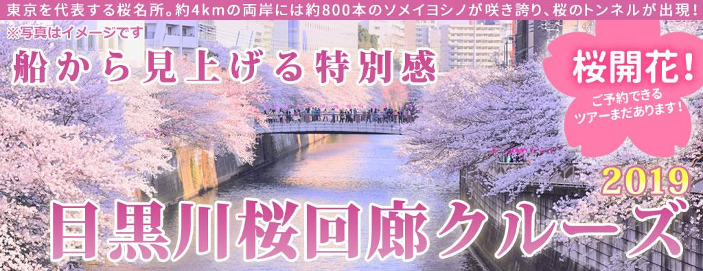 目黒川桜回廊クルーズ2019