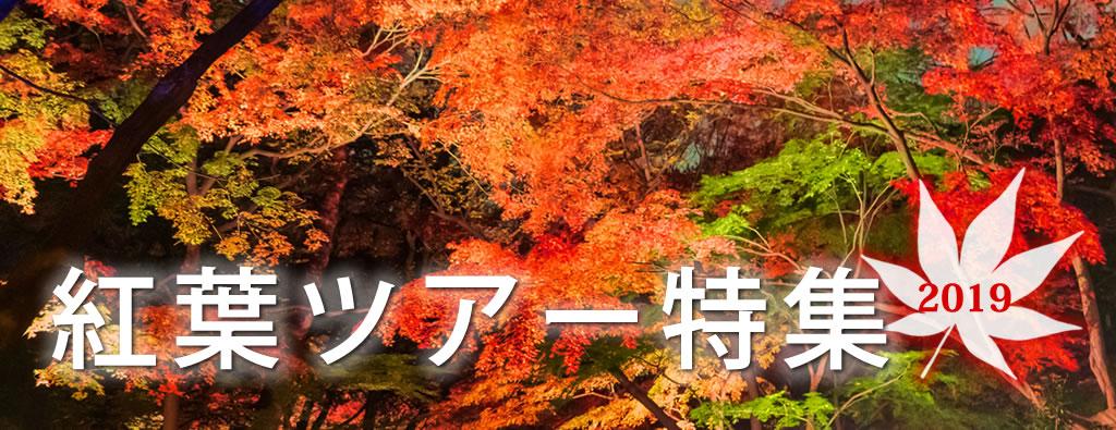 紅葉観賞ツアー2019