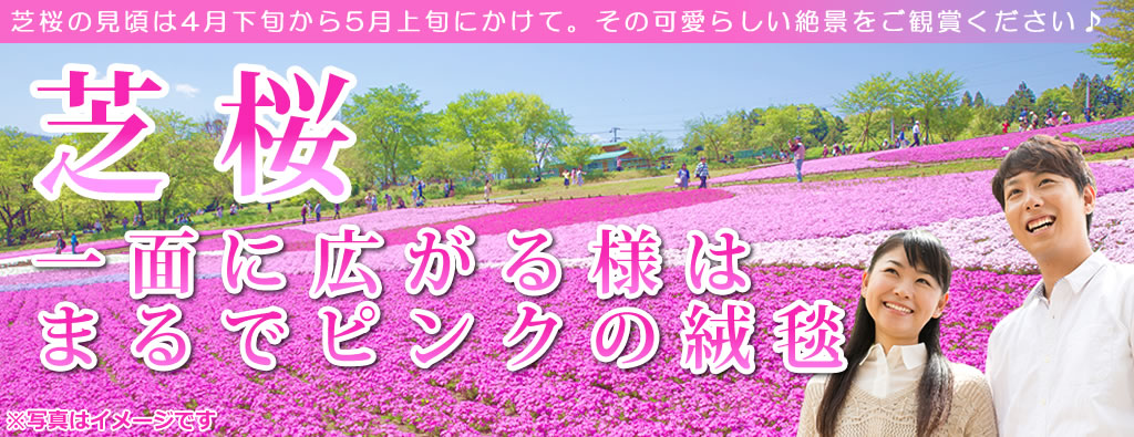 芝桜観賞ツアー2019
