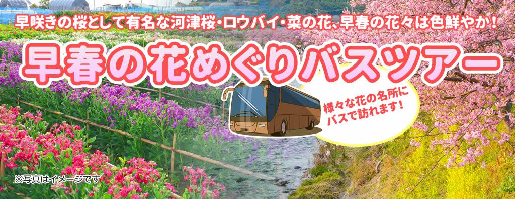 早春の花めぐりバスツアー