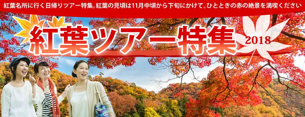 紅葉名所見学ツアー2018